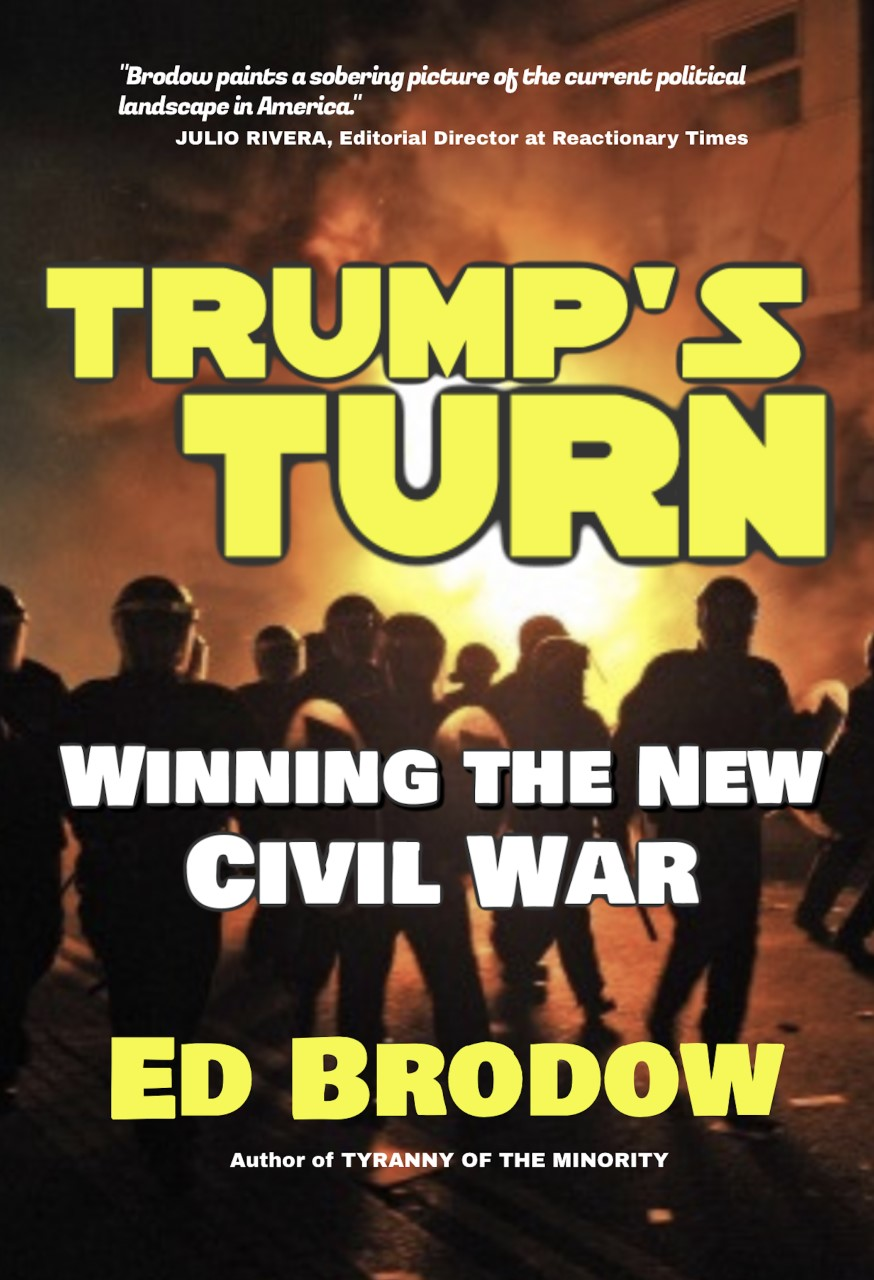 Photo of Book Review: Trump's Turn: Winning the New Civil War by Ed Brodow
