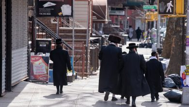 Photo of Cindy Grosz: It's Petition Time in NY, Who Should Jews Trust?