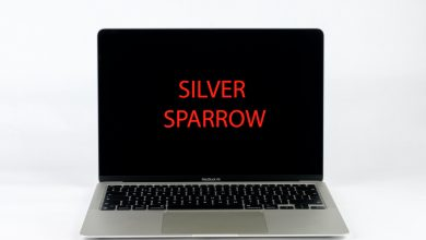 "Photo of Hacker Sneaks ""Silver Sparrow"" Malware Into More Than 30k MacBooks"