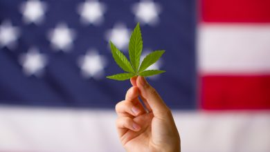 Photo of Virginia Becomes the 16th State to Legalize Recreational Marijuana Use